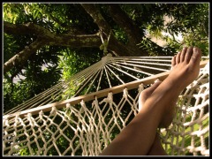 hammock_feet_by_artisttoes