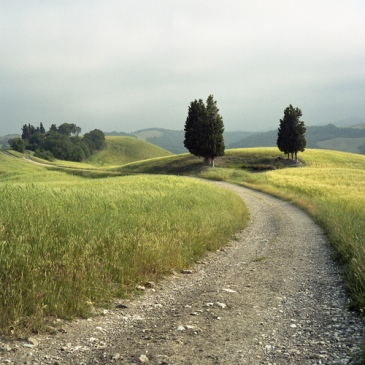 tuscan_dirt_road